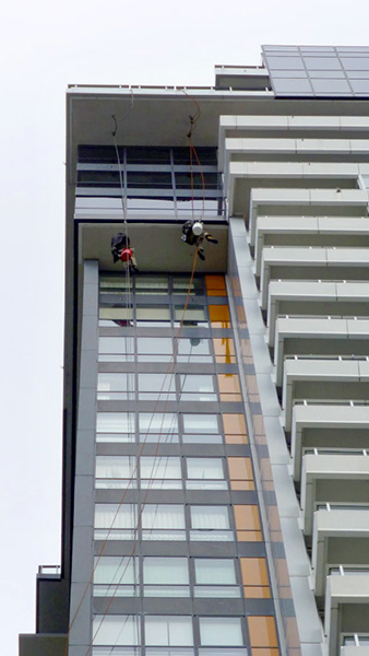 Inaccessible windows on a high rise residential tower accessed via rope and re-belay